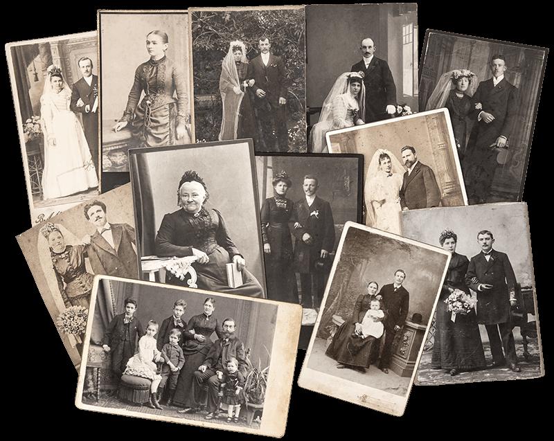 trace Irish family roots - tree
